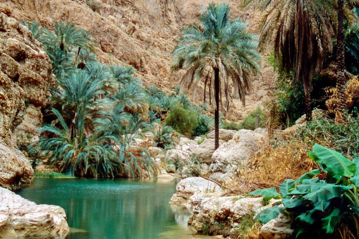 Nach einer etwa 20minütigen Wanderung durch lauschige Gärten und üppige Vegetation erreicht man den spektakulärsten Teil des Wadi Shab, Oman - © Ralf Siemieniec / Shutterstock