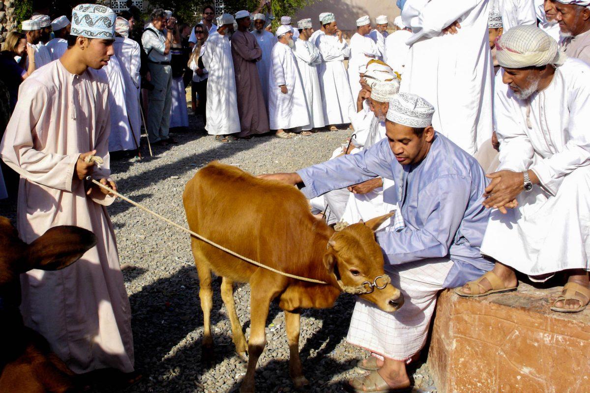 Der freitägliche Tiermarkt am Fuß der Festung von Nizwa zählt zu den größten Spektakeln im Oman - © ChameleonsEye / Shutterstock