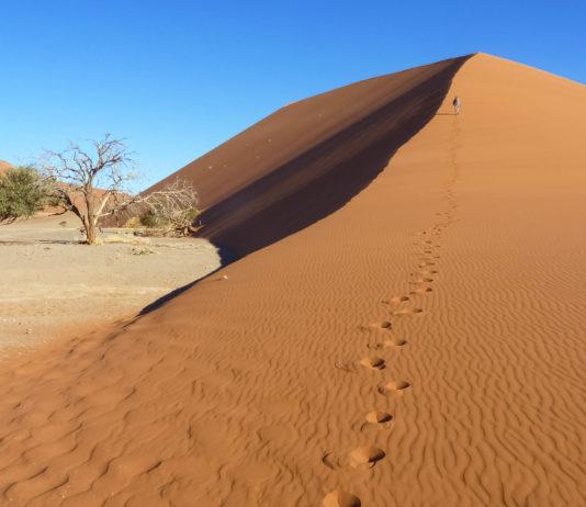Die berühmte Düne 45 in Sossusvlei im Namib-Naukluft-Nationalpark, Namibia - © FRASHO / franks-travelbox