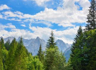 Der Jaufenpass im Herzen von Südtirol, Italien, gehört eindeutig zu den Top 10 der Alpenpässe - © FRASHO / franks-travelbox