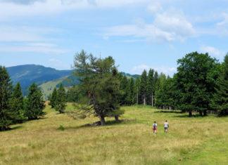 Als Herzstück des steirischen Almenlandes im Südosten von Österreich ist die märchenhafte Teichalm ein herrliches Ausflugsziel für Groß und Klein - © FRASHO / franks-travelbox