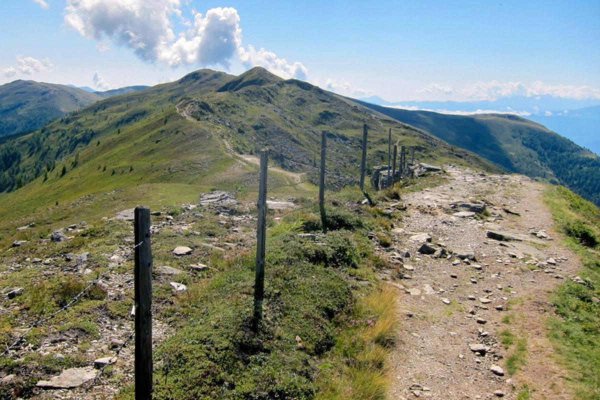 An der Hansbauerhütte startet der Wanderweg auf den Tschiernock und weiter auf den Hochpalfennock auf 2.099m Seehöhe, Österreich - © FRASHO / franks-travelbox