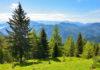 Das ganze Jahr über lockt der Goldeck nahe Spittal an der Drau in Kärnten, Österreich, mit attraktiven Freizeitmöglichkeiten für die ganze Familie - © FRASHO / franks-travelbox