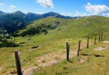 Die Nockalmstraße schlängelt sich durch eine landschaftlich besonders reizvolle Region im Süden Österreichs - © FRASHO / franks-travelbox