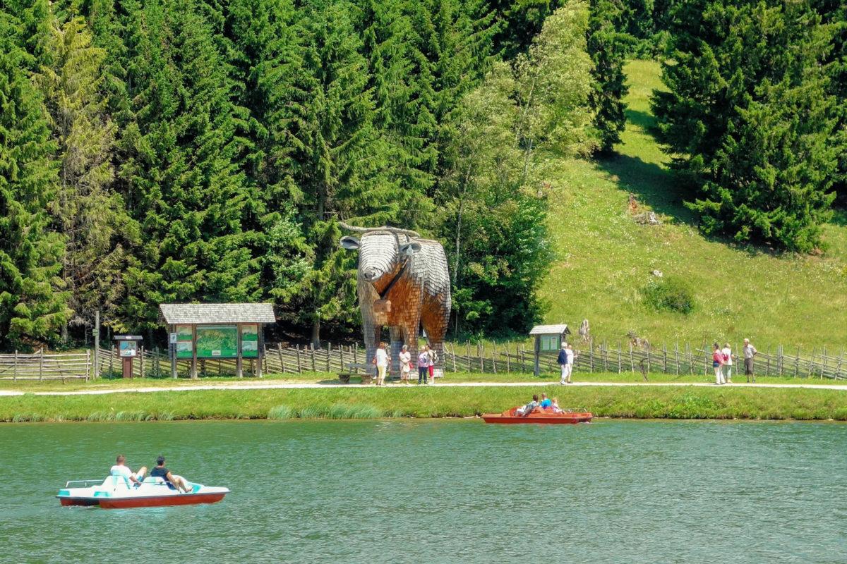 Rund um den Teichalmsee führt der etwa einstündige barrierefreie Moorlehrpfad mit Hütten und Schautafeln, die einen guten Überblick über die Region liefern, Österreich - © FRASHO / franks-travelbox