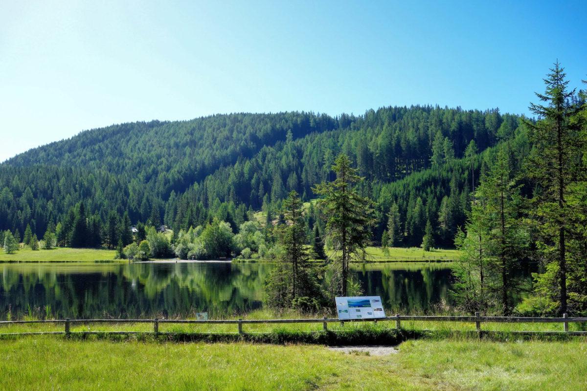 Übergangs- und Niedermoore sowie die zahlreichen Zu- und Abflüsse des Prebersees bilden eine Heimat für viele Tier- und Pflanzenarten, Österreich - © FRASHO / franks-travelbox