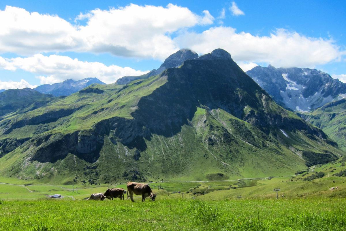 Der ursprüngliche Naturpark Hochtannberg bei Warth in Vorarlberg, Österreich präsentiert sich als idyllisch grünes Eldorado für Aktivurlauber und Naturliebhaber - © FRASHO / franks-travelbox