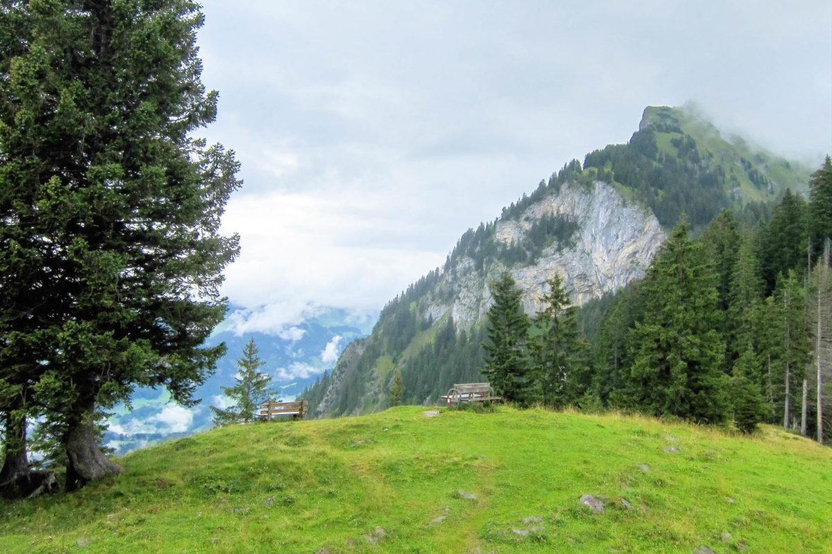 Mellau und seine naturbelassene Umgebung formen das ideale Urlaubsziel für Outdoor- und Aktivurlaub in Vorarlberg, Österreich - © FRASHO / franks-travelbox