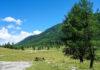 Wanderwege in die Karnischen Alpen und der berühmte Egger Almkäse machen die Egger Alm im südlichen Österreich zu einem lohnenden Ausflugsziel - © FRASHO / franks-travelbox