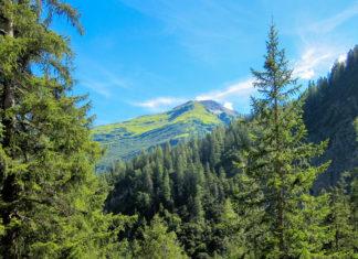 Das Lechtal in Tirol und Vorarlberg ist eines der schönsten Urlaubsziele für Wanderferien und Familienurlaub im Westen von Österreich - © FRASHO / franks-travelbox