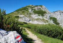 Die Petzen ist für genussvollen Aktivurlaub in Kärnten, Österreich, wie geschaffen - © FRASHO / franks-travelbox