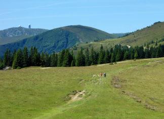 Die Weinebene im südlichen Österreich ist mit dem urigen Almhüttendorf das ideale Urlaubsziel für Wander- und Winterurlaub - © FRASHO / franks-travelbox