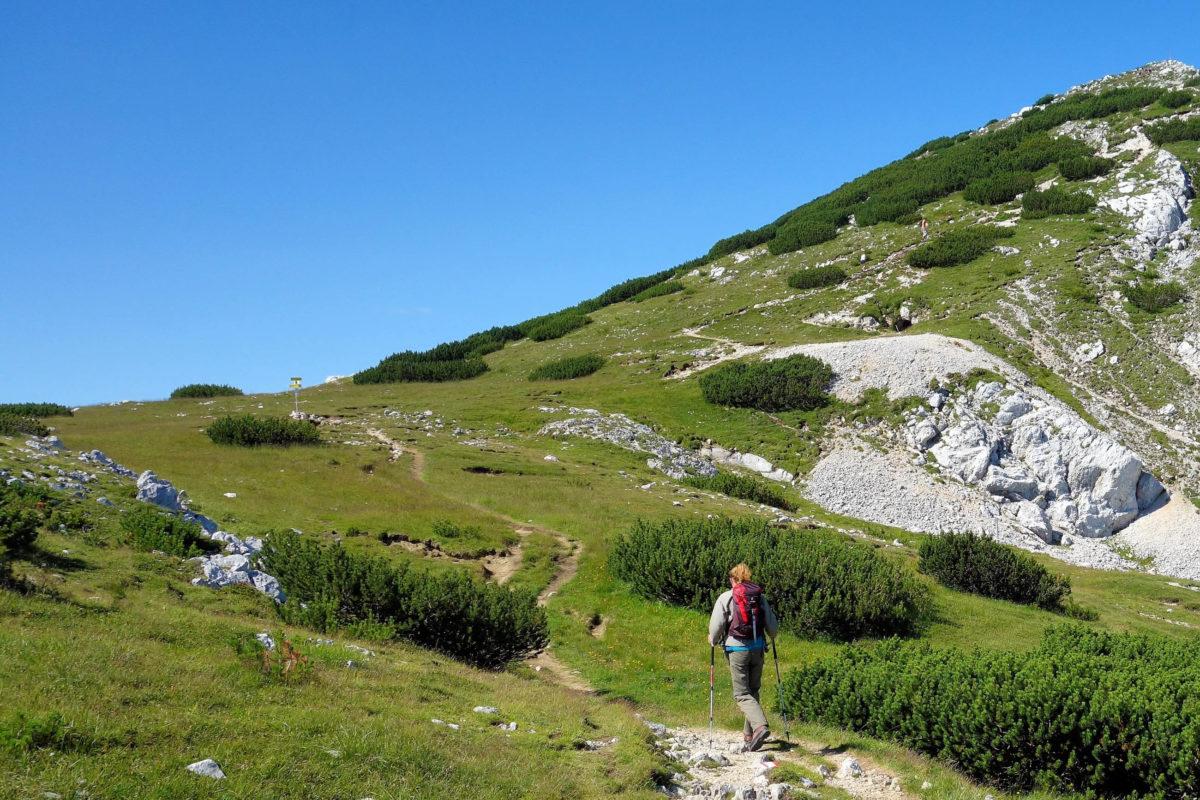 Von der Bergstation der Kabinenbahn Petzen in Kärnten ist der Kniepssattel direkt zu erreichen, Österreich - © FRASHO / franks-travelbox