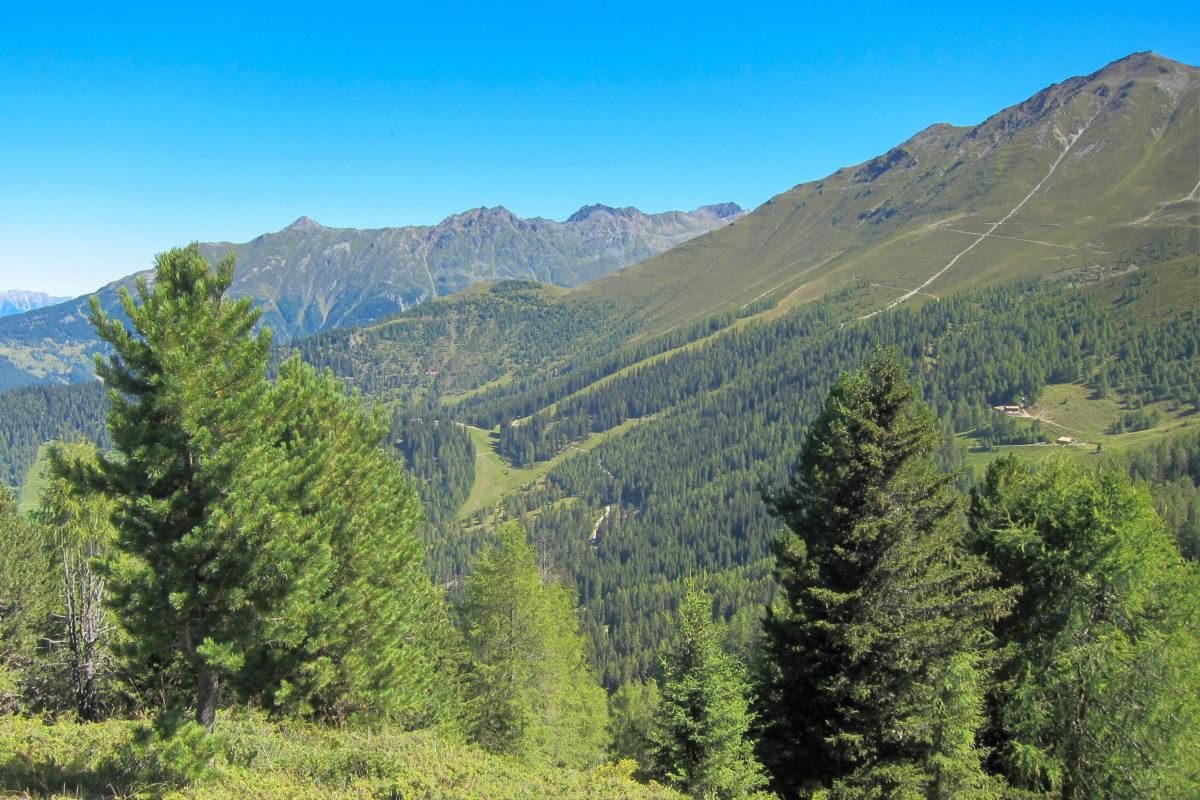 Der Ausblick von der Sattelklause über die grünen Almwiesen des Kaunertals machen Appetit auf die nächste Wanderetappe am Fendelsberg in Tirol, Österreich - © FRASHO / franks-travelbox