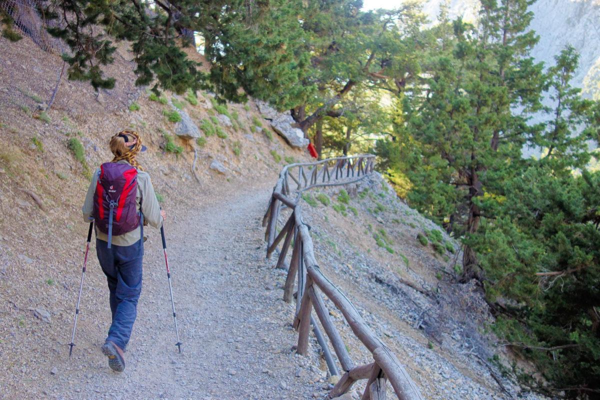 Die ersten Kilometer starten in der Samaria-Schlucht auf Kreta, Griechenland, noch sehr gemütlich durch den Wald - © FRASHO / franks-travelbox