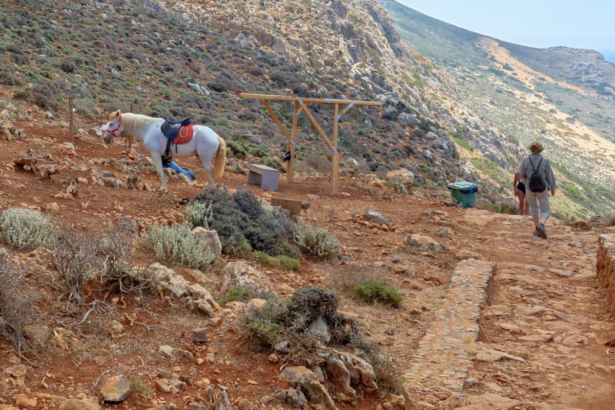 """Erschöpfte Kreta-Urlauber können für den Rückweg von der Lagune von Balos zum Parkplatz auf so genannte """"Donkey Taxis"""" umsteigen, Griechenland - © FRASHO / franks-travelbox"""