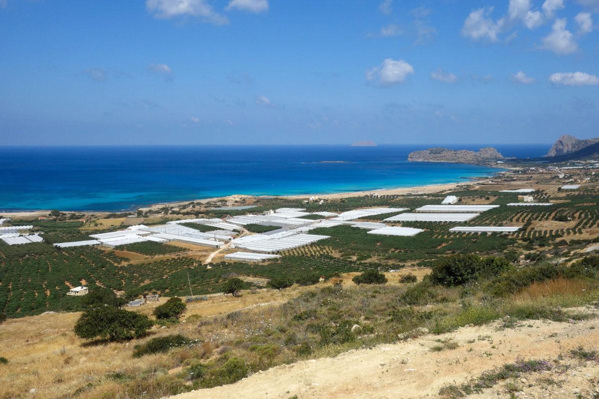 Der Anbau von Tomaten und Oliven war vor dem Tourismus die größte Einnahmequelle der Einheimischen von Falasarna auf Kreta, Griechenland - © FRASHO / franks-travelbox