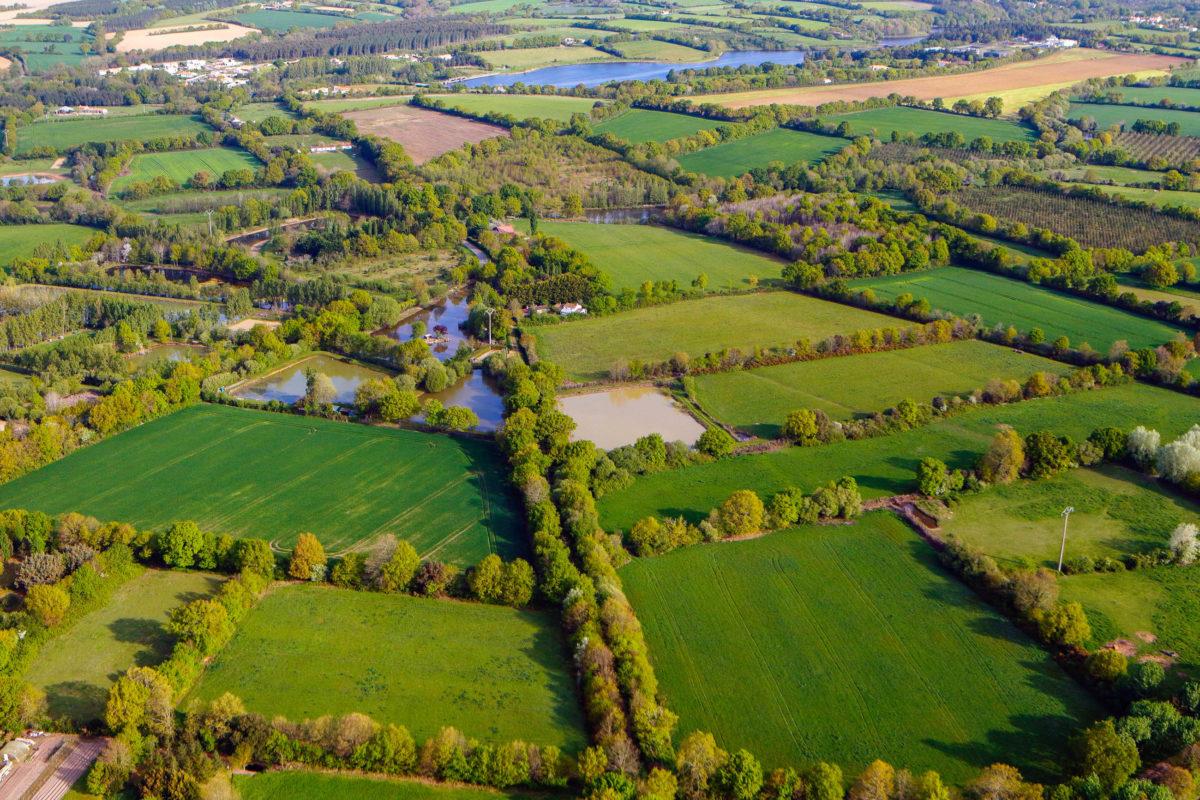 Die Normandie kann mit einer einmaligen landschaftlichen Besonderheit aufwarten: Den Bocages, Frankreich - © philippe Devanne / stock.adobe.com