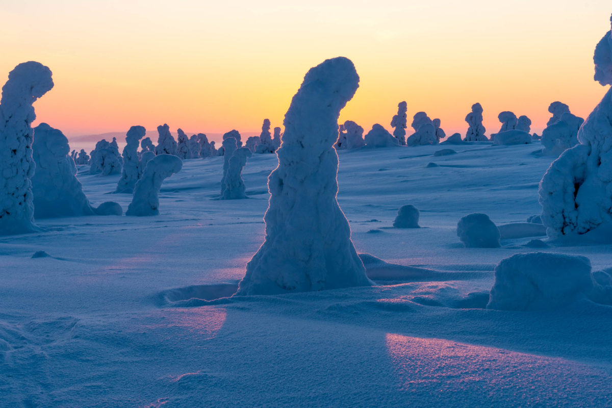 In Finnlands Norden kann in der einzigartigen Landschaft die Stille und Einsamkeit genossen werden - © Jamo Images / stock.adobe.com