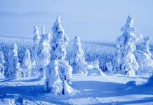 Rauer Winter mit Unmengen von Schnee in Lappland - © Kati Molin / Shutterstock