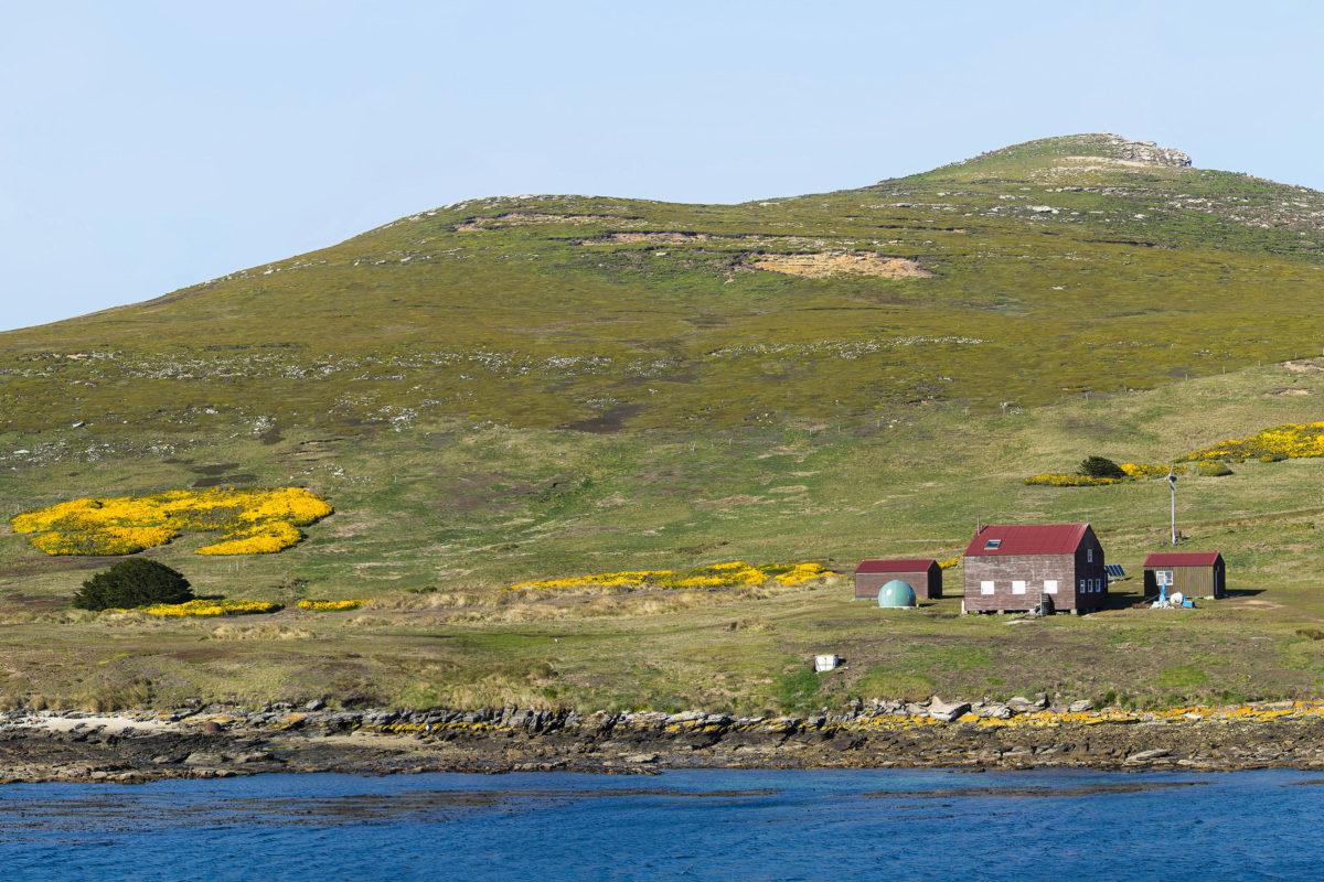 Auf den Falklandinseln ist nicht immer durch Zäune usw. ersichtlich, wo sich die Grenze zwischen öffentlichem und privatem Besitz befindet, Großbritannien - © Tom / stock.adobe.com