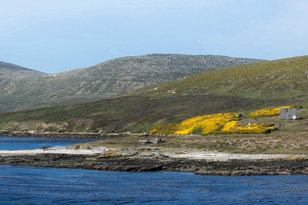 Einsamkeit sowie die raue Landschaft sind die wirklichen touristischen Stärken der Falklands, Großbritannien - © Tom / stock.adobe.com