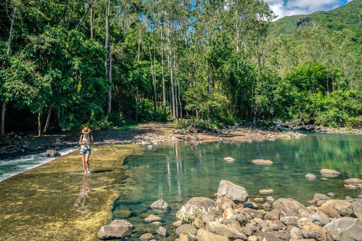 Ein weitläufiges Netz von insgesamt 60 Kilometern an Wanderwegen durchzieht die spektakuläre Landschaft des Black River Gorges Nationalpark, Mauritius - © Daniel Malinowski / Shutterstock