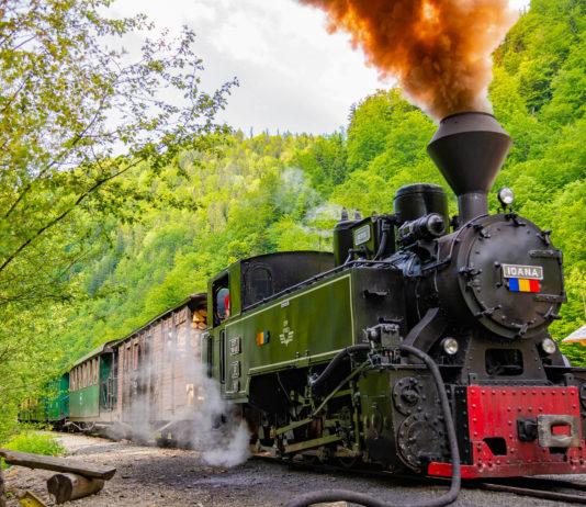 Die Waldbahn im Vaser-Tal führt von der Stadt Viseu de Sus durch das Wassertal bis an die ukrainische Grenze, Rumänien - © Hurghea Constantin / Shutterstock