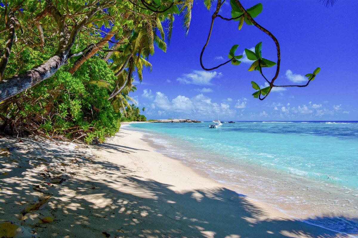 Der meist gut besuchte Anse Forbans liegt an der Südküste von Mahé und war angeblich einst eine Piratenbucht, Seychellen - © Thomas Amler / Shutterstock