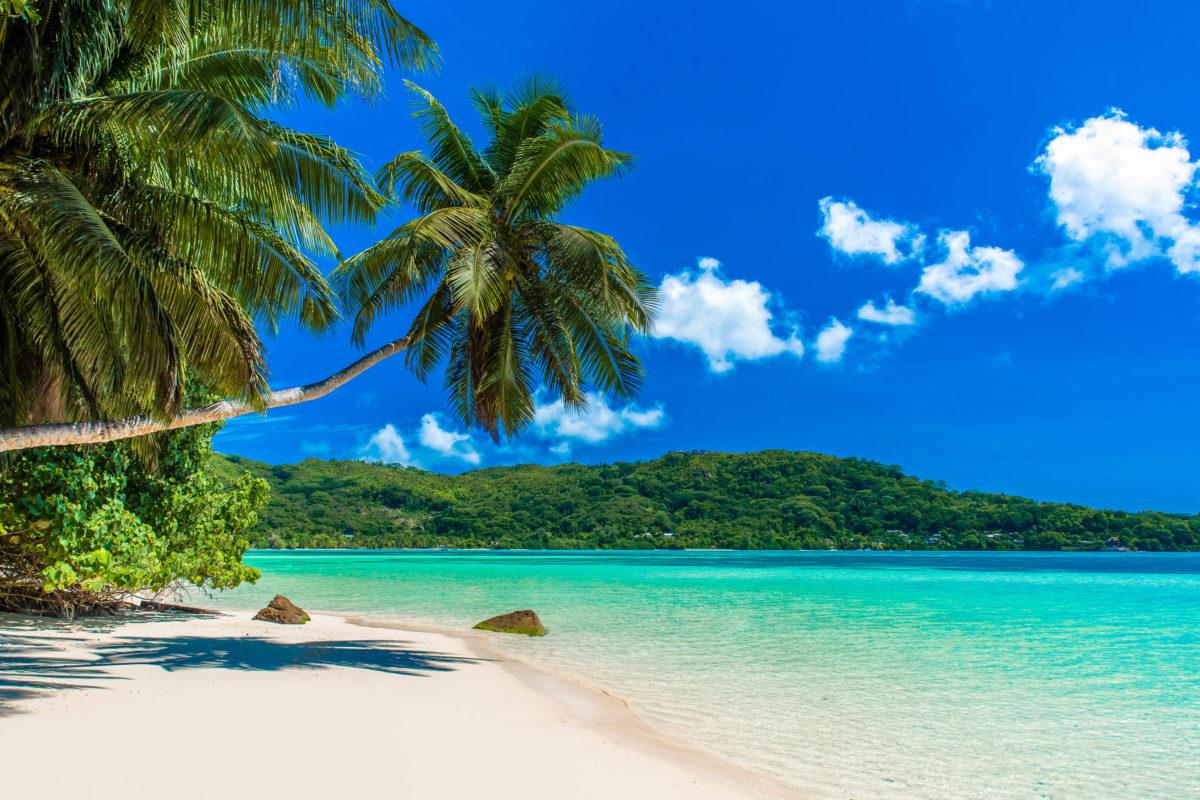 Der traumhafte Anse à la Mouche liegt an der Südwestküste Mahés, der größten Insel der Seychellen - © Simon Dannhauer / Shutterstock