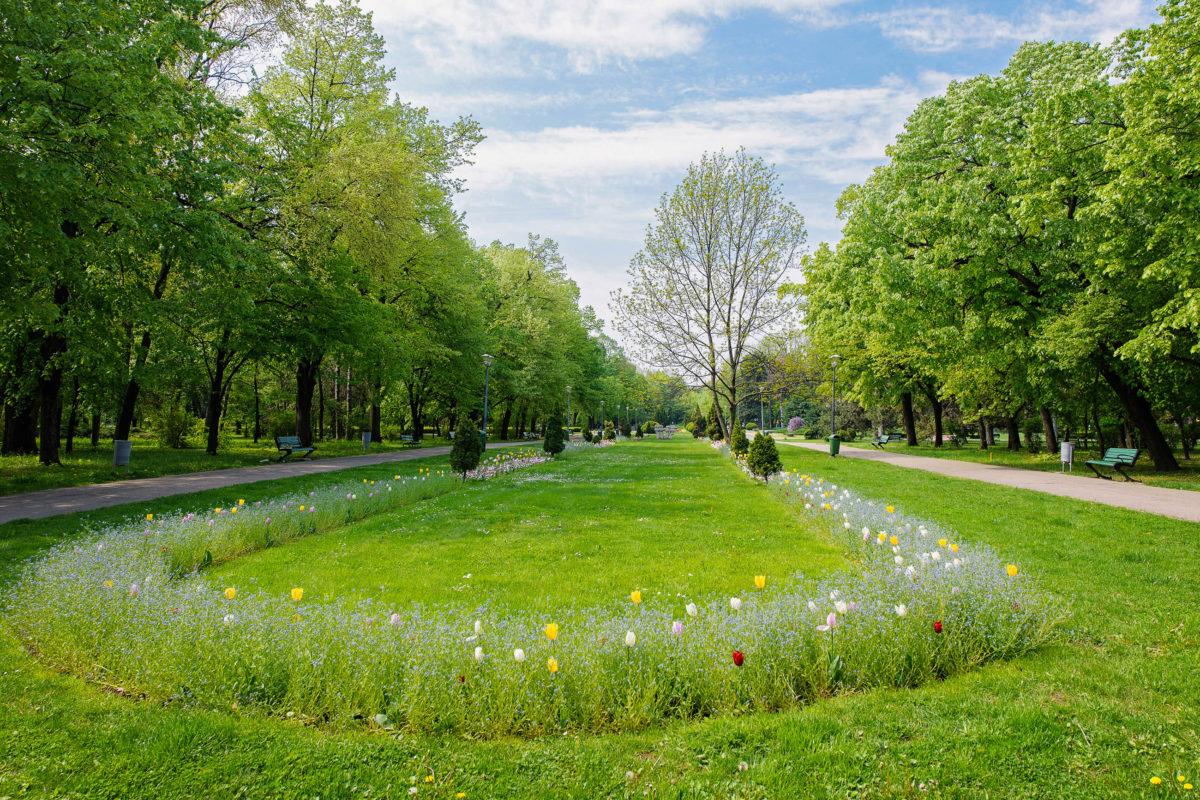 Der äußerst sehenswerte Parcul Regele Mihai I al României ist der größte Park von Bukarest und gilt seit 2004 als Naturdenkmal, Rumänien - © FrimuFilms