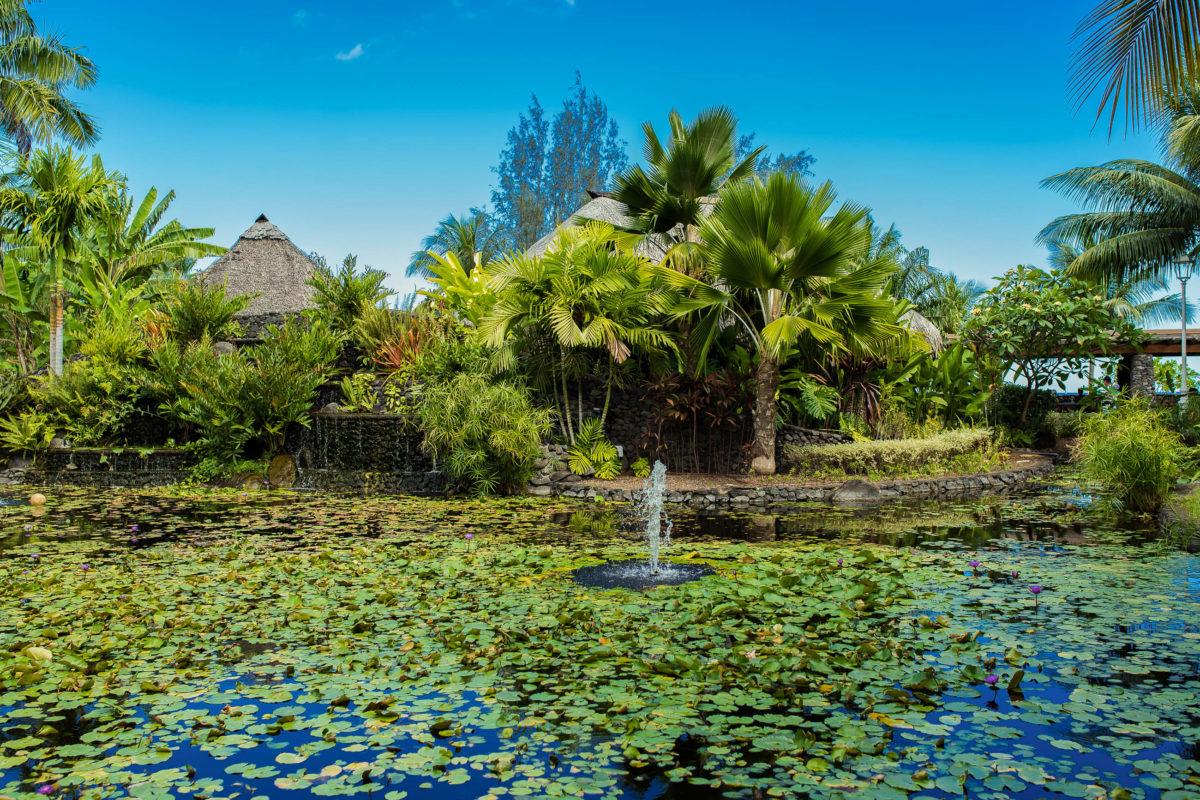 Der knapp 5 Hektar große Pā'ōfa'i Gardens in Papeete liegt gleich am Meer und präsentiert die tropische Pflanzenwelt von Französisch-Polynesien - © Pascale Gueret / Shutterstock
