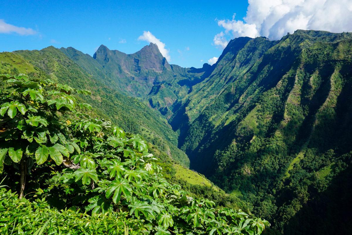 Der Mont Orohena auf Tahiti ist der höchste Berg von Französisch Polynesien, sein Gipfel ragt 2.241 Meter über das Meer hinaus - © Damsea / Shutterstock