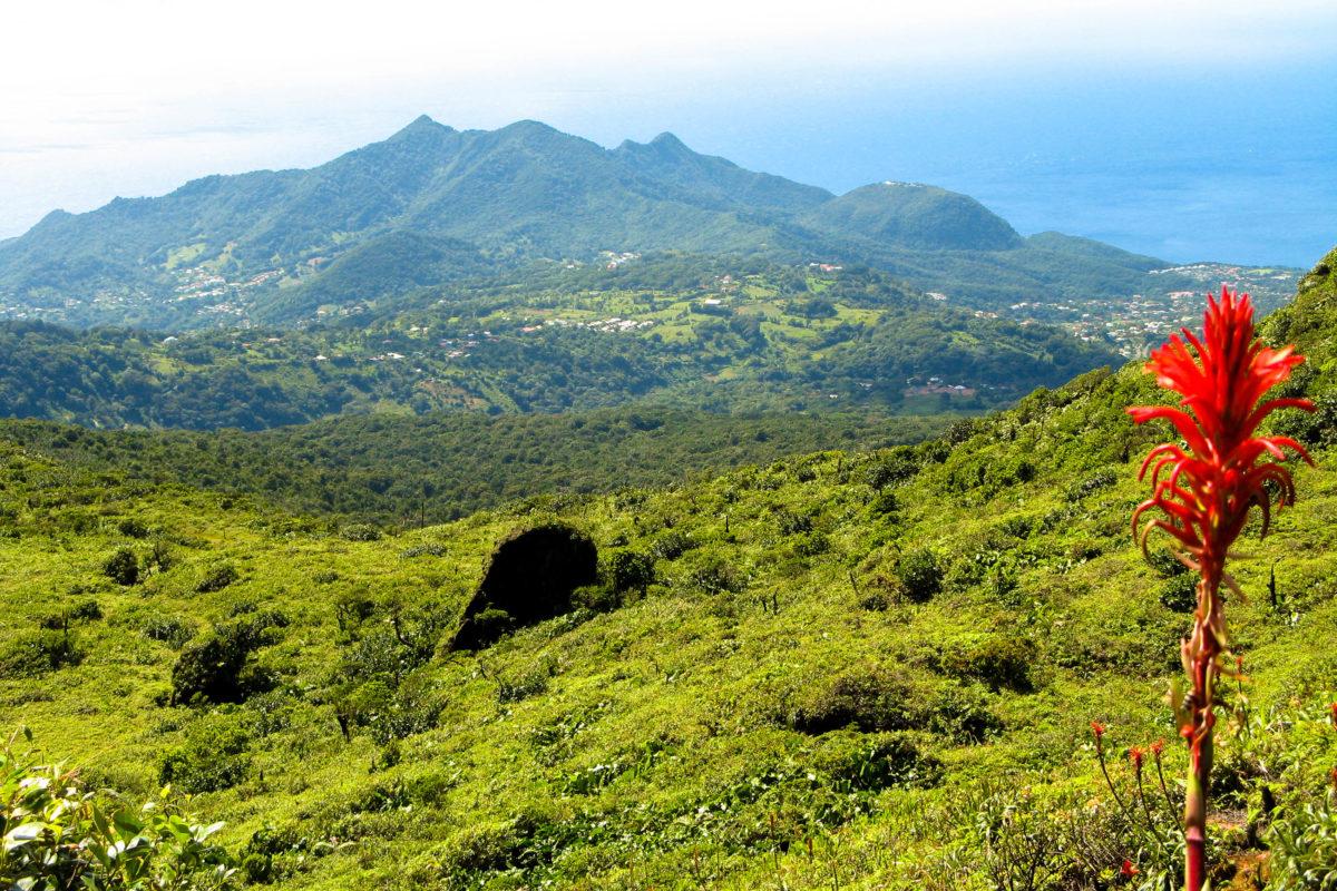Die traumhafte Aussicht bei der Besteigung des La Soufrière entschädigt für den schweißtreibenden Aufstieg, an klaren Tagen kann man sogar bis zur Nachbarinsel Dominica sehen, Guadeloupe - © vouvraysan / Shutterstock