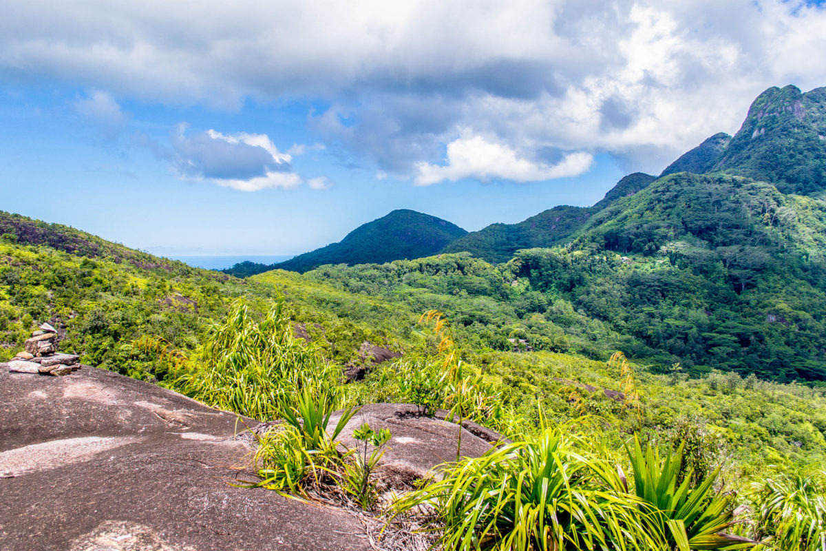 Das gut markierte Wegenetz durch den Urwald des Morne Seychellois Nationalparks hat eine Gesamtlänge von 15km und kann über 12 verschiedene Touren erforscht werden, Seychellen - © KarlosXII / Shutterstock